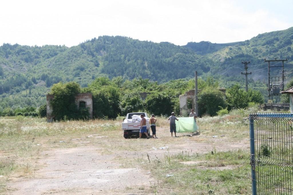 Ruinele Casei Sibicenilor, acoperite de vegetație.